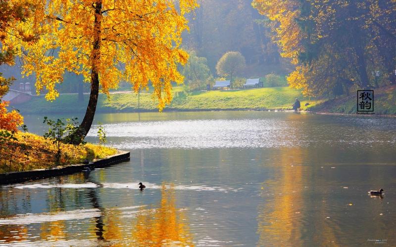 bieu cam ve mua thu - Biểu cảm về mùa thu