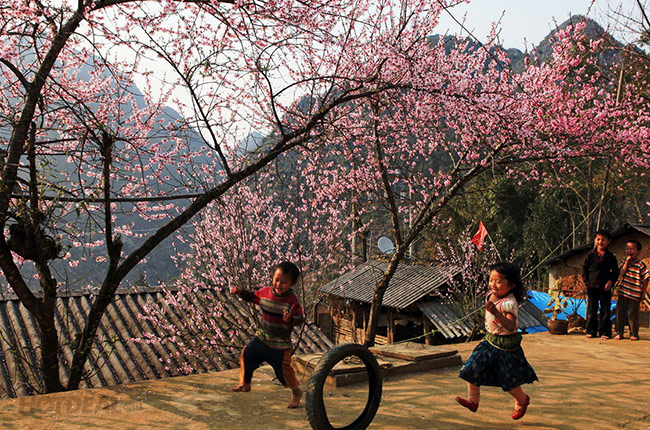 cam nhan ve mua xuan tren que huong - Cảm nhận về mùa xuân trên quê hương