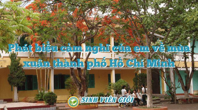 Phát biểu cảm nghĩ của em về mùa xuân thành phố Hồ Chí Minh